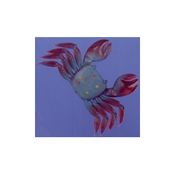 granchio in gomma mis. L OLYMPUS